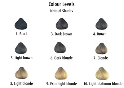 Hair Colouring  Understanding Colour Levels  Beauty Tips  Uniprix